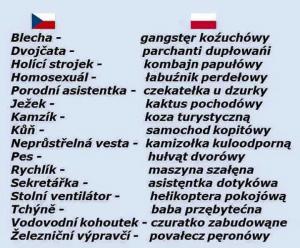 Polština a Čeština