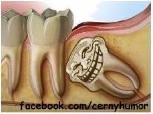 Troll zub