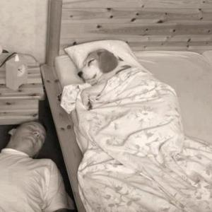 Tady spím já