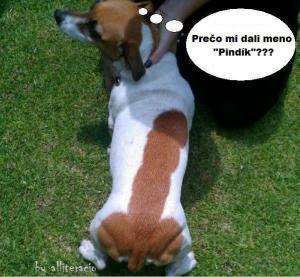 Pindík