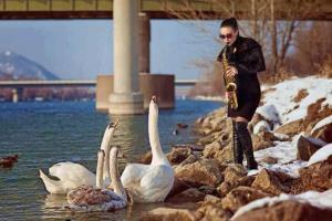 Koncert pro labutě