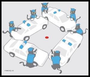 Kočičí policie