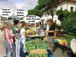 Zelinář