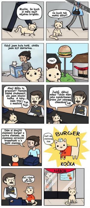 Burger kočka!