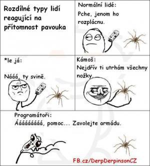 Když vidím pavouka