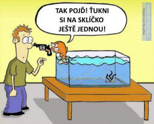Naštvaná rybka