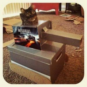 Vojenská kočka