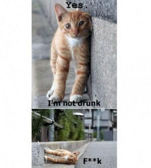 Nejsem opilá