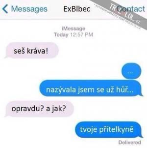 Ex-přítel
