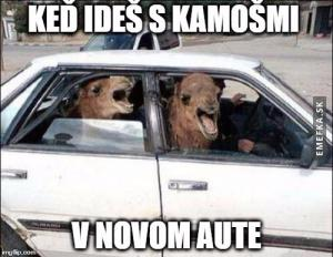 S kámošema v novým autě