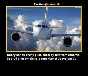 Druhý pilot