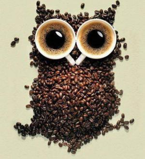 Soví káva