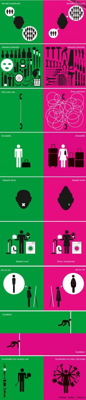 Rozdíly mezi muži a ženami