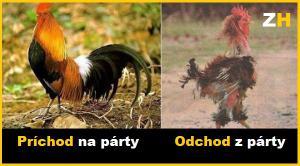 Před a po party