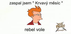 Rebel vole