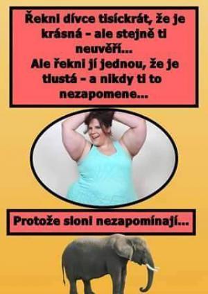 Ale řekni jí jednou, že je tlustá!