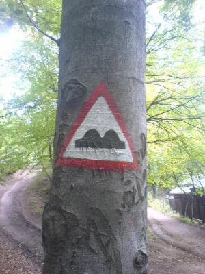 znacka na strome