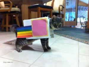 X Nyan Cat Costume