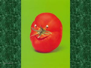 ovoce11