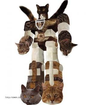 catformer