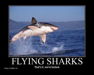 flyingsharks