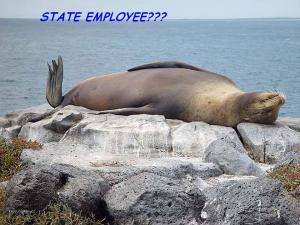 State employee