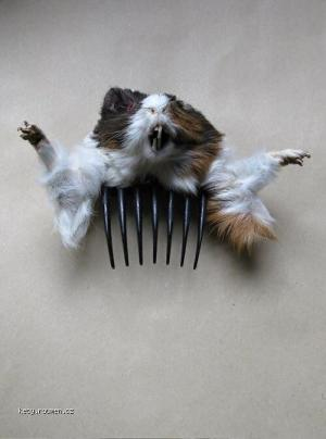 Truly Terrifying Fashion Accessories4