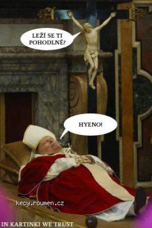 503 017 snof papez