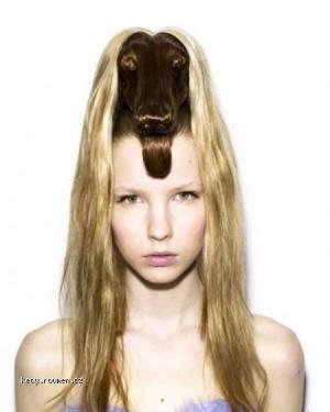animals haircut 03