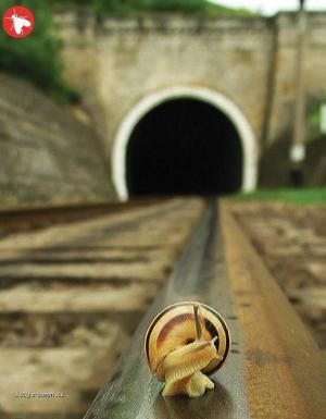 co to huci v tunelu