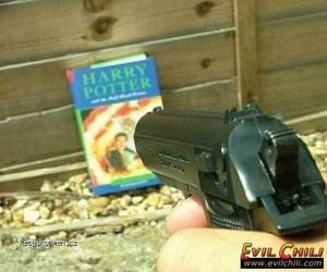 Vrazda Harryho Pottera