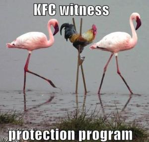 witness protection