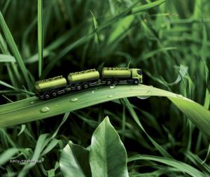 zelena housenka