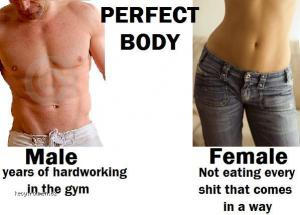 Difference between perfect bodies