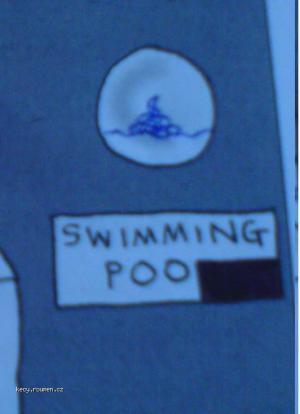 swimmingpoo