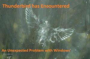 thunderbird fail