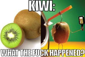kiwi tehdy a dnes