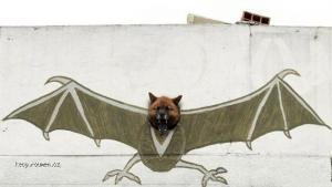 Doghead wall