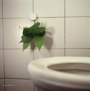 toaletak pro zelene