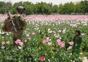 to nei opium pane jenom kytky