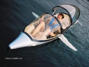 Dolphin Submarine 3