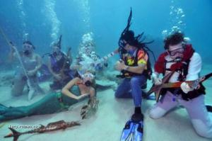 Picture of the day  Underwater concert in Big Pine Key