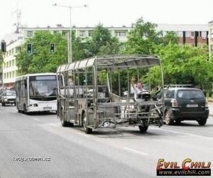 Striptyzautobus