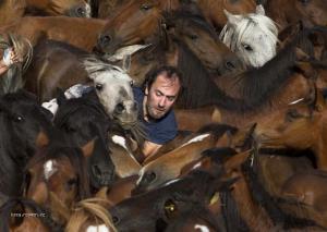 Muz sa snazi vysadnut na kona pocas tradicnych pretekov divokych koni