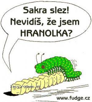 Hranolka