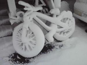 snehove kolo