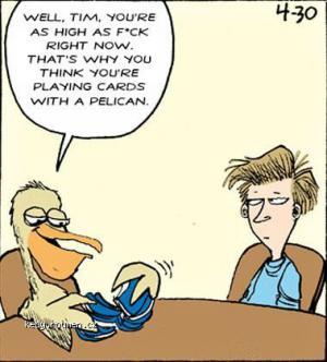 Mondy comic 020511