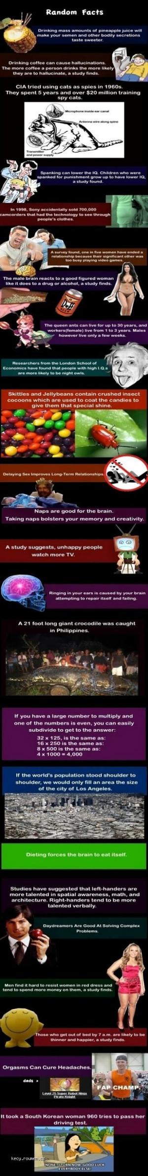 X Random Facts