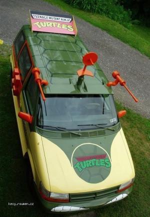 turtles auto