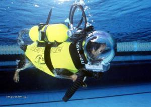 dog underwater equip